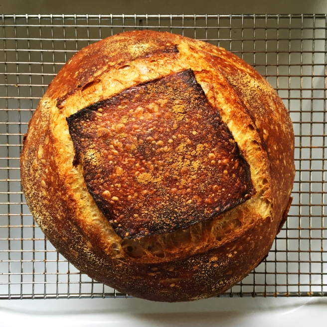 This week's sourdough loaf